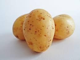 البطاطس 118.jpg