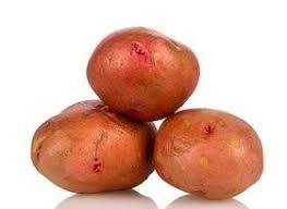 البطاطس 137.jpg