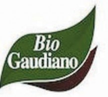 الزيتون الإيطالي «بيو جاوديانو» ملوّث بسموم