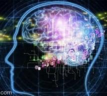 لماذا يستعيد العقل الذكريات عديمة الأهمية؟